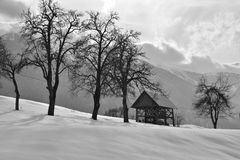 Beautiful winter scene in black and white. Winter, snowy scene in Slovenia in black and white. With old Slovenian hayrack and with old and high pear trees royalty free stock images