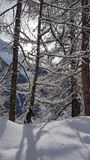 Beautiful winter scene in the Swiss alpine mountains royalty free stock images