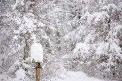 Beautiful winter scene - wooden bird feeder with a tall cap of s Stock Images
