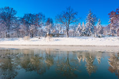 Beautiful winter scenery with fresh snow and trees in a park Stock Image