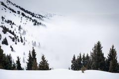 Beautiful Winter scenery Royalty Free Stock Photo