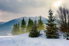 Beautiful winter scenery in mountains stock photo
