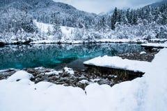 Beautiful winter scenery on pure lake Zelenci in cloudy sunrise, Kranjska Gora, Slovenia Stock Photo