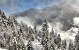 Beautiful Winter Scenery. Royalty Free Stock Image