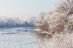 Beautiful winter scenery with trees covered by frost, along frozen river Royalty Free Stock Photo