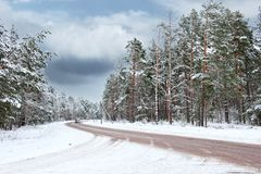Beautiful winter scenic. Picture of a Beautiful winter scenic Stock Image