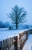 Beautiful winter scenic Royalty Free Stock Photo