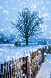 Beautiful winter scenic Royalty Free Stock Images