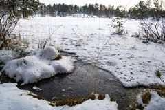 A frozen lake in the forest, melting ice by the water edge. Beautiful winter season landscape, a snowy frozen lake in the forest. Melted ice by the water edge stock photo