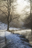 Beautiful Winter snow covered countryside landscape of river flo Royalty Free Stock Photos
