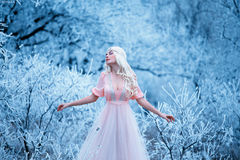 Beautiful winter and spring Royalty Free Stock Images