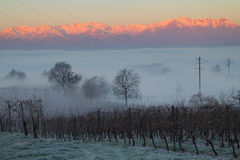 Beautiful winter sunrise on a foggy morning Stock Images