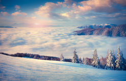 Beautiful winter sunrise in the foggy mountains. Royalty Free Stock Photos
