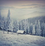 Beautiful winter sunrise in the mountain farm. First frost in December Stock Photography