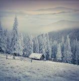 Beautiful winter sunrise in the mountain farm. Stock Photography
