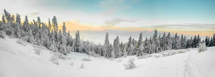 Beautiful winter sunrise photo taken in mountains Royalty Free Stock Images