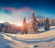 Beautiful winter sunrise in snowy mountains royalty free stock photos