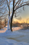 Beautiful winter sunset Royalty Free Stock Photo