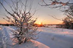 Beautiful winter sunset Royalty Free Stock Photography