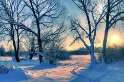 Beautiful winter sunset Royalty Free Stock Image