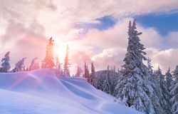 Free Beautiful Winter Sunset Royalty Free Stock Images - 22142249
