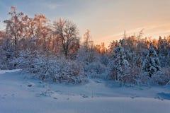 Beautiful winter sunset Royalty Free Stock Photos