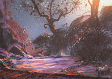 Beautiful winter sunset with fantasy trees in the snow Royalty Free Stock Photography