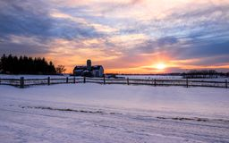 Winter sunset at the farm. Beautiful winter sunset at the farm with the snow in the foreground stock photos