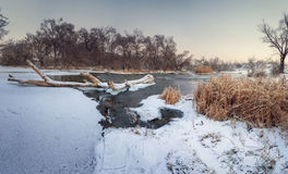 Beautiful winter sunset at the river Krinka. Forest in Ukraine Royalty Free Stock Photo