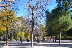 Winter time in park Retiro, Madrid, Spain Stock Image