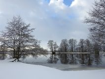 Beautiful winter trees near river, Lithuania Royalty Free Stock Image