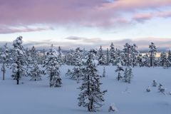 Winter view from a national park in the mountains in Sweden Stock Images