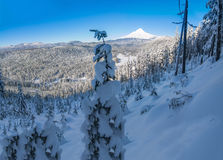 Beautiful Winter Vista of Mount Hood in Oregon, USA. Majestic View of Mt. Hood on a bright, sunny day during the Winter months royalty free stock photos