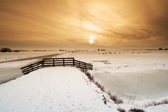 Beautiful winter windmill landscape Royalty Free Stock Image