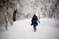 Beautiful winter woman portrait taken in mountains Stock Image