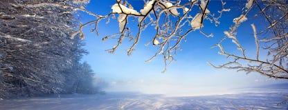 Beautiful winter XXL Royalty Free Stock Photography
