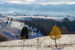 Beautiful wintry rural landscape over the hills of Magura village, Brasov county, Romania, a touristic destination in the Carpathi. An mountains, located between royalty free stock photography