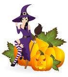 Beautiful witch Stock Photography
