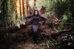 Beautiful witch  posing in mystic forest Stock Images