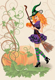 Beautiful witch and pumpkin, halloween card Stock Image