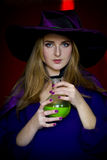 Beautiful witch in purple Halloween with a broom Stock Photos