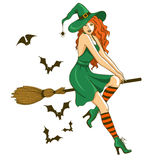 Beautiful witch sitting on the broom Royalty Free Stock Photo