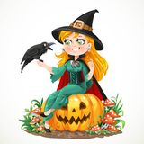 Beautiful witch sitting on a pumpkin and talks to black raven Stock Photos