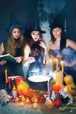 Beautiful witches Stock Images
