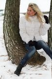 Beautiful woman. In winter fur coat Stock Photos