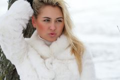 Beautiful woman. In winter fur coat Stock Photo
