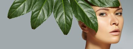 Beautiful woman applies Organic Cosmetic. Spa and Wellness. Model with Clean Skin. Healthcare. Picture with leaf Royalty Free Stock Photography