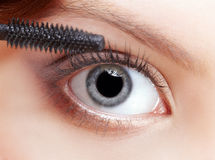 Beautiful woman applying mascara Stock Image