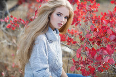 Beautiful woman in autumn park royalty free stock photography