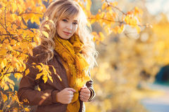 Beautiful woman in autumn park. Stock Photos